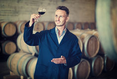 Male  winemaker in uniform having glass of wine in hands in cell. Smiling male young diligent winemaker in uniform having glass of wine in hands in cellar Stock Photos
