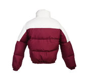 Male winter jacket isolated Stock Images