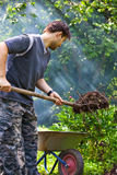 Male worker. Summer vibrant colors Royalty Free Stock Images