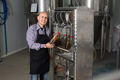 Male worker on beer brewery. Portrait of mature male brewery worker operating bottling machinery on factory Stock Image