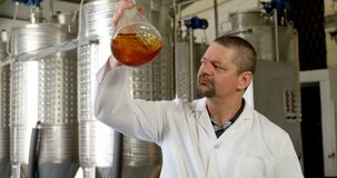 Male worker examining liquor in flask 4k stock footage