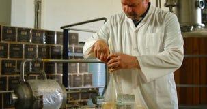 Male worker examining liquor in flask 4k stock video