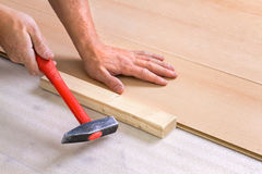 Male Worker laminate flooring. At home Stock Photos