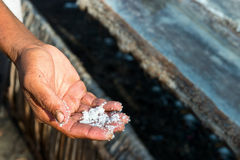 Male worker's hand with fresh extracted sea salt in Bali, Indone. Male worker's hand with sea salt and wooden tanks for evaporation on background. It is a unique Stock Photography