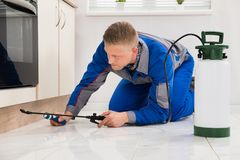 Male Worker Spraying Pesticide On Cabinet. Male Worker Kneeling On Floor And Spraying Pesticide On Wooden Cabinet Stock Photos