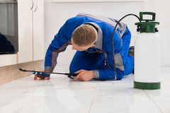 Male Worker Spraying Pesticide On Cabinet. Male Worker Kneeling On Floor And Spraying Pesticide On Wooden Cabinet royalty free stock photos
