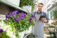 Male Worker Using Digital Tablet In Flower Shop. Mid adult male worker using digital tablet while standing by trolley in flower shop Royalty Free Stock Images