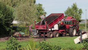 Male workers moving soil from the back of a large red trailer into a wheelbarrow
