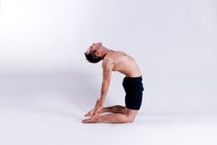 Male yoga model Royalty Free Stock Image