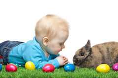 Male young Baby in meadow with Easter bunny. Baby is sitting in meadow together with Easter bunny and colorful eggs. Isolated on white Background Royalty Free Stock Photos