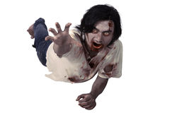 Male zombie crouching on the floor Stock Photos