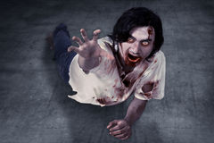 Male zombie crouching on the floor Royalty Free Stock Image