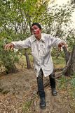 Male Zombie Emerges From the Woods. A grotesque and bloody male zombie emerges from the woods Stock Photography