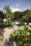 Malecon 2000 guayaquil ecuador. Garden malecon 2000 outdoor park boulevard guayaquil ecuador south america Royalty Free Stock Photo