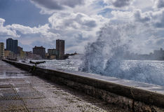 Malecon do EL Fotografia de Stock Royalty Free