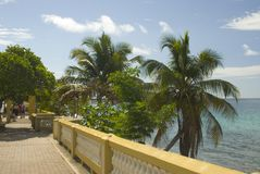 Malecon promenade on vieques. Seaside promenade caribean island vieques, puerto rico coconut trees by the sea malecon stock photo