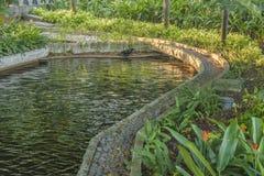 Malecon 2000 trädgårds- detaljsikt, Guayaquil, Ecuador Arkivbilder