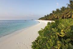 Malediven stockbilder