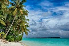 Malediven - Insel im Ozean, Strand und Ð-alm Bäume lizenzfreie stockfotos