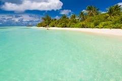 Malediven-Paradiesstrand Perfekte Tropeninsel Schöne Palmen und tropischer Strand Schwermütiger blauer Himmel und blaue Lagune lu lizenzfreie stockfotografie