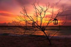 Malediven-Sonnenuntergang Stockfotografie