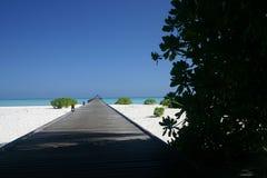 Maledives-Insel Lizenzfreie Stockfotos