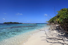 Maledivische Insel Lizenzfreies Stockfoto