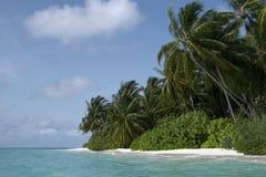 Maledivische Inselküste Stockfotografie