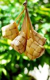Maleise compacte glutineuze rijst royalty-vrije stock fotografie