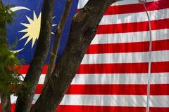 Maleise Vlag en Boom Stock Afbeeldingen