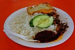 Maleisisch Voedsel - Nasi Lemak Royalty-vrije Stock Fotografie
