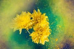 Malen Sie großen Knall und Blumen Lizenzfreie Stockfotos