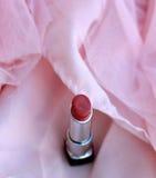 Malen Sie Ihre Lippen Lizenzfreie Stockfotografie