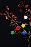 Malen Sie Wannen Farbe in den Banken, auf schwarzem Hintergrund Vorbereitung für malenden Herbstlaub auf schwarzem Hintergrund Vi Stockfoto