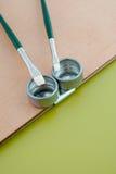 Maler pallete Detail mit Pinseln Lizenzfreies Stockfoto