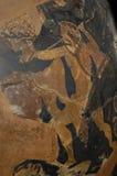 Malerei eines Kriegers auf einem Stück des altgriechischen Vase Stockfotografie