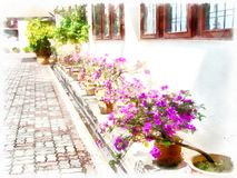 Malerei eines schönen Yard mit purpurroten Blumen lizenzfreie abbildung