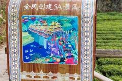 Malerei von Dong-Brücke des Zauns von Tee plantaion Stockfotografie