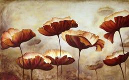 Malereimohnblumen Stockfotos