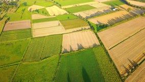 Malerische Ansicht des grünen Ackerlands stock video footage