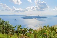 Malerische Kakteen und romantischer Panoramablick von einer Höhe auf Kessel, Felsen und vulcan in Fira-Stadt in Santorini-Insel Lizenzfreie Stockbilder