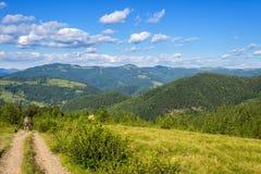 Malerische Karpatenberge, Naturlandschaft im Sommer, Ukraine Stockbild