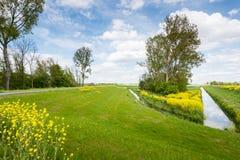 Malerische Landschaft in den gelben, grünen und blauen Farben Stockfotografie