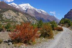 Malerische nepalesische Landschaft mit einer landwirtschaftlichen Straße Stockfoto