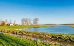 Malerische niederländische Naturlandschaft im Herbst Stockbild