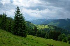 Malerische Sommerlandschaft am sonnigen Tag lizenzfreie stockfotografie