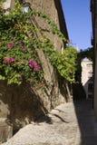 Malerische Straße in Caceres Stockfoto