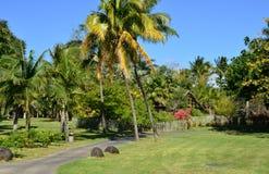 Malerischer Bereich von La Pointe Zusatz-Canonniers in Mauritius Repu stockfotografie