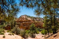 Malerischer Bereich von Zion National Park, Utah, USA Stockfotos
