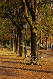 Malerischer Herbstpark Lizenzfreies Stockbild